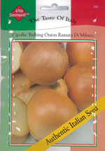 Small Image of Italian Cipolla Ramata di Milano Onion seeds