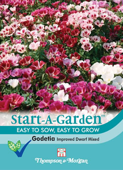 Image of Start a Garden Godetia Improved Dwarf Mixed