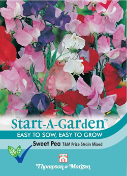Image of Start a Garden Sweet Pea T&M Prize Strain Mixed