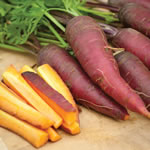 Small Image of Thompson and Morgan Carrot - Cosmic Purple