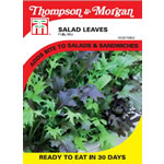 Small Image of Thompson and Morgan Salad Leaves : Frilly Mix Finished Packet