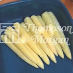 Image for Sweetcorn Seeds