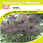 Small Image of Thompson and Morgan Herb : Fennel Bronze