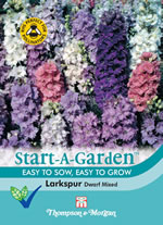 Small Image of Start a Garden Larkspur The Seven Dwarfs