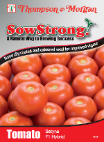 Sow Strong Satyna F1 Hybrid Tomato Seeds