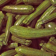 Image of Thompson and Morgan Courgette Seeds