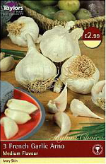 Small Image of Arno French Garlic Bulbs (Spring Planting)