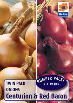 Image of Onion Twin Pack - Centurion / Red Baron