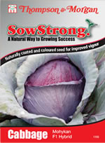Sow Strong Mohykan F1 Hybrid Cabbage