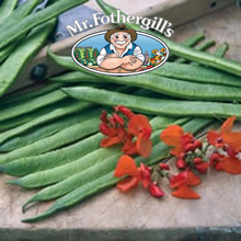 Image of Mr Fothergills Aintree Runner Bean Seeds