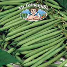 Image of Mr Fothergills Calgary Dwarf Bean Seeds