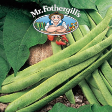 Image of Mr Fothergills Red Rum Runner Bean Seeds