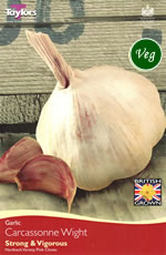 Garlic Bulbs - Carcassonne (1 Bulb)
