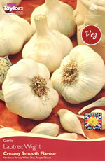 Garlic Bulbs - Lautrec Wight (Single Bulb)