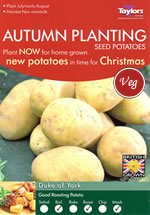 Autumn Planting Seed Potatoes - Duke of York