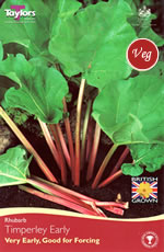 Rhubarb Crown Timperley Early