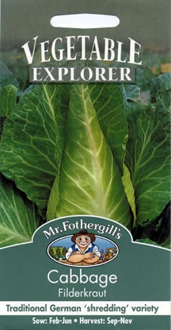 Image of Vegetable Explorer Filderkraut Cabbage Vegetable Seeds