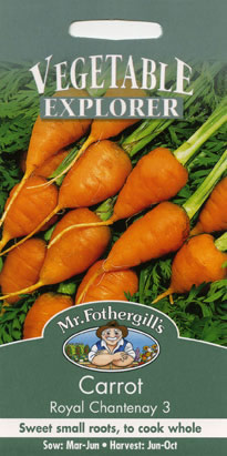 Image of Vegetable Explorer Royal Chantenay 3 Carrot Seeds