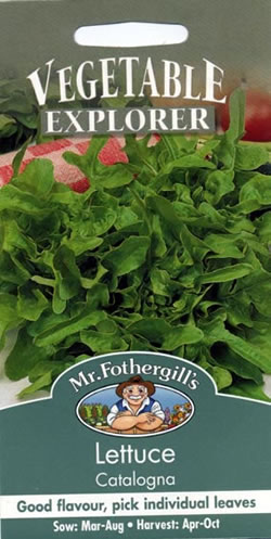 Image of Vegetable Explorer Catalogna Lettuce Seeds
