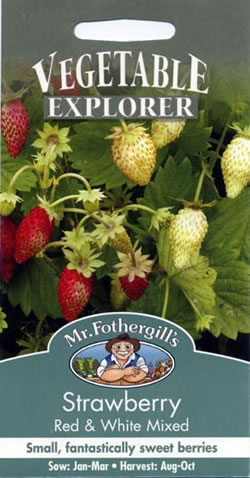 Image of Vegetable Explorer (Alpine) Red and White Mixed Strawberry Seeds
