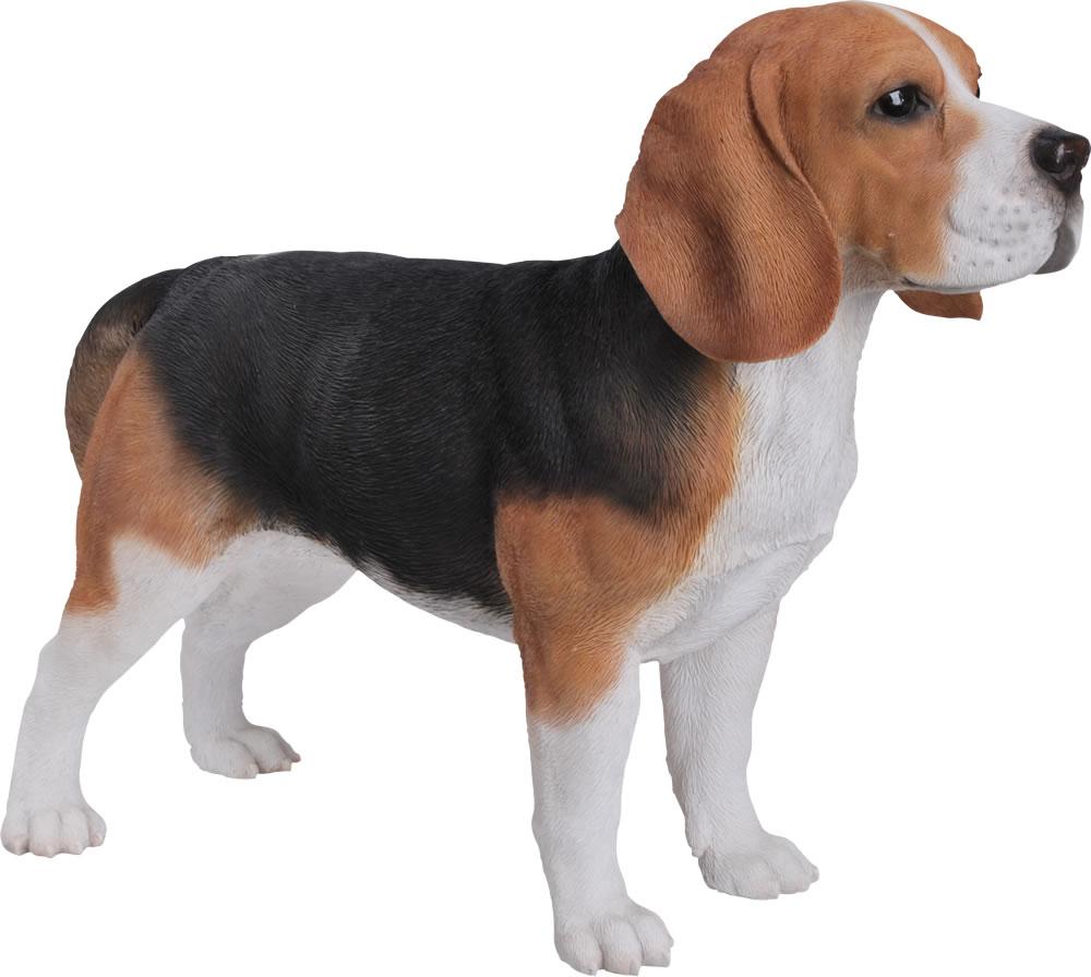 Beagle Resin Garden Ornament 163 74 99 Garden4less Uk Shop