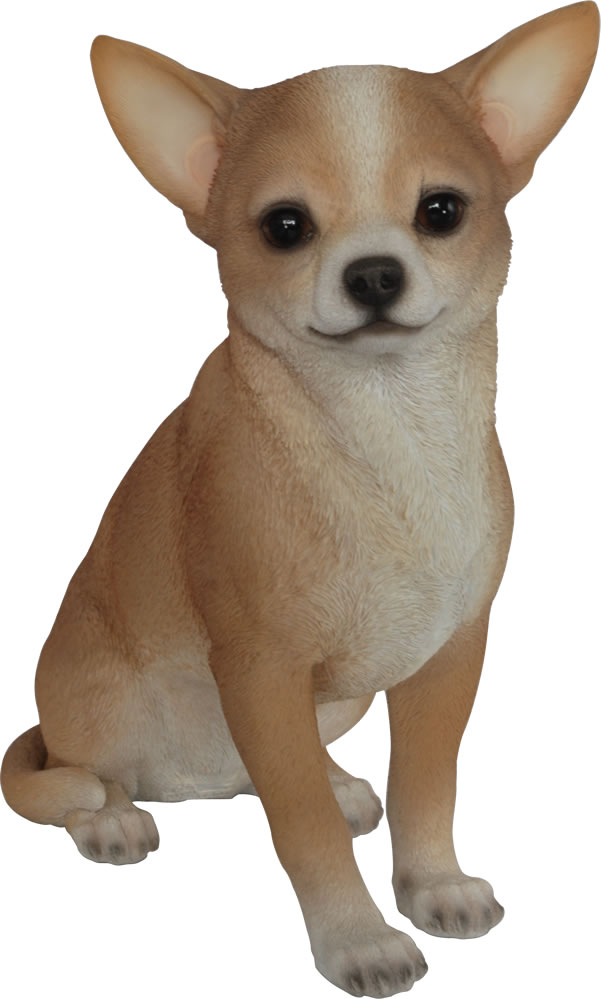 Real Life Chihuahua Resin Garden Ornament 163 19 99