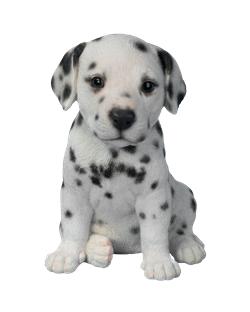 Image of Pet Pal Dalmatian Puppy - Resin Garden Ornament