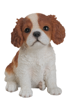 Image of Pet Pals King Charles Puppy - Resin Garden Ornament