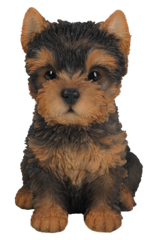 Image of Pet Pals Yorkshire Terrier Puppy - Resin Garden Ornament