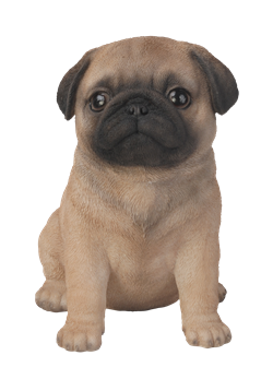Image of Pet Pal Pug Puppy - Resin Garden Ornament