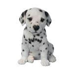 Small Image of Pet Pal Dalmatian Puppy - Resin Garden Ornament
