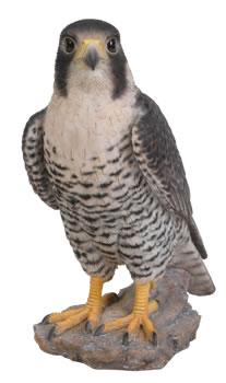 Image of Vivid Peregrine Falcon Lifelike Resin Garden Ornament