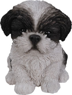 Image of Pet Pals Shih-Tzu Puppy in Black - Resin Garden Ornament - PP-SZBK-F