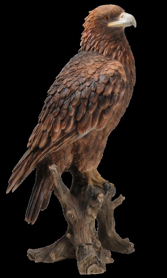 Golden Eagle Resin Garden Ornament 163 39 99
