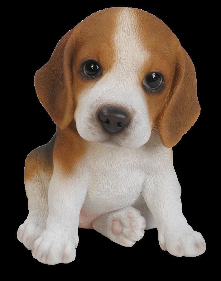 pet pals beagle puppy   resin garden ornament   9 49
