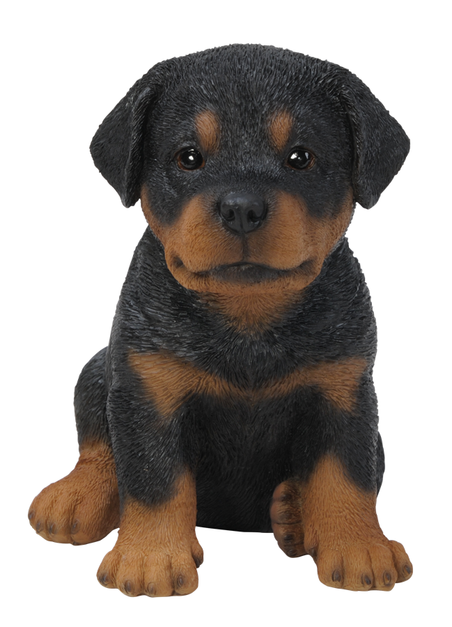 Pet Pal Rottweiler Puppy Resin Garden Ornament 163 9 99