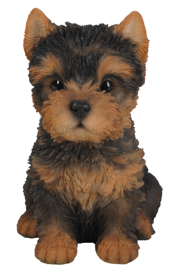 Pet Pals Yorkshire Terrier Puppy Resin Garden Ornament