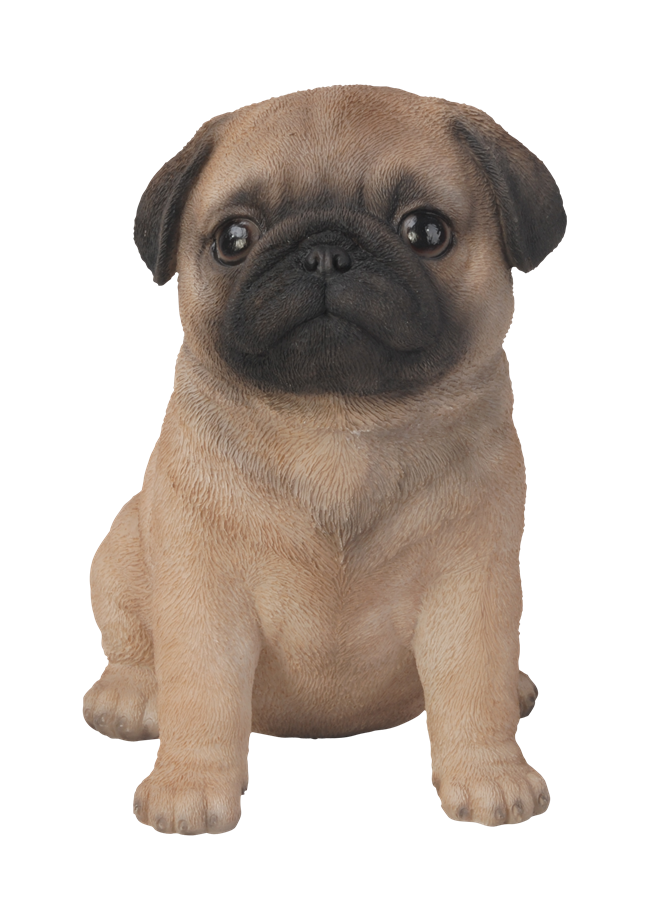 pet pal pug puppy resin garden ornament 1631099