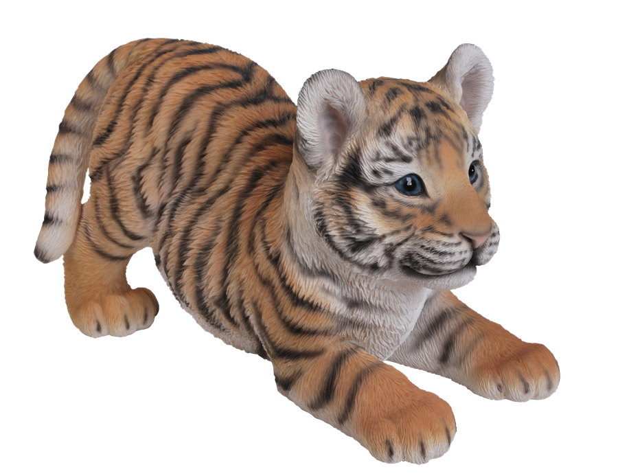 Transparent Dining Table Covers Images Amazoncom Oblong  : l Tiger Cub Playful from www.favefaves.com size 900 x 693 png 1486kB