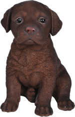 Small Image of Pet Pals Chocolate Labrador Pup - Resin Garden Ornament