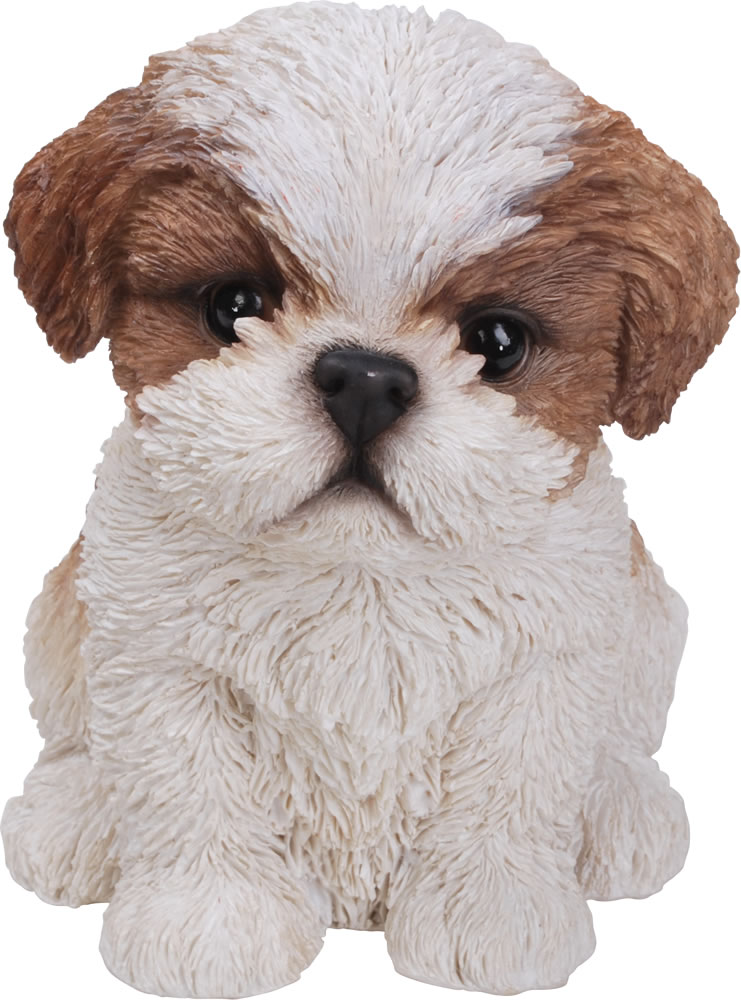 Captivating Image Of Pet Pals Shih Tzu Puppy In Brown   Resin Garden Ornament