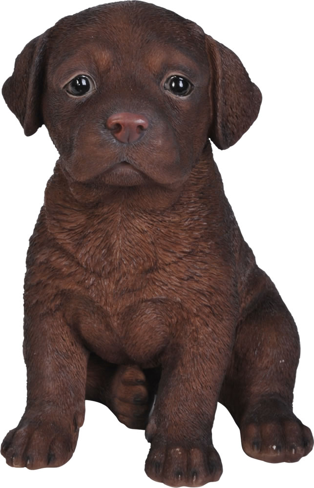 Pet Pals Chocolate Labrador Pup Resin Garden Ornament