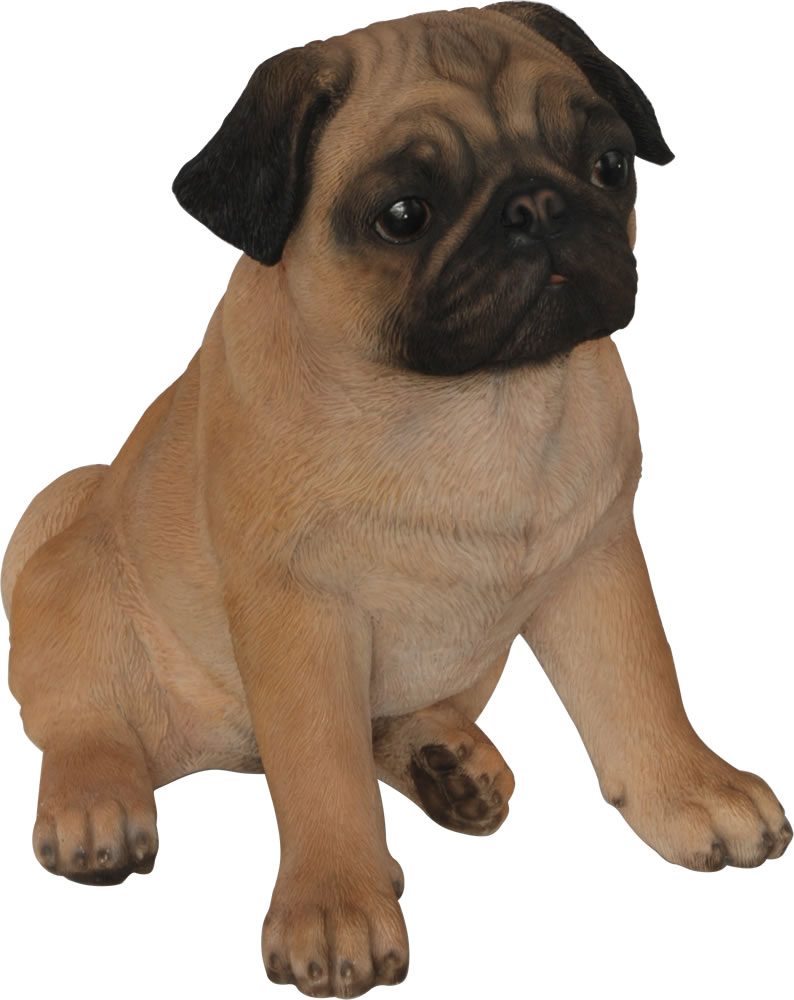 Real Life Pug Resin Garden Ornament 163 34 99