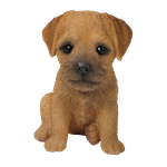 Small Image of Pet Pals Border Terrier Puppy - Resin Garden Ornament