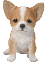 Small Image of Vivid Pet Pals Brown & White Chihuahua Lifelike Resin Garden Ornament