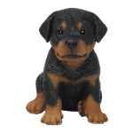 Small Image of Pet Pal Rottweiler Puppy - Resin Garden Ornament