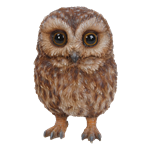 Small Image of Pet Pals Baby Tawny Owl - Resin Garden Ornament