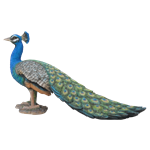Small Image of Real Life Peacock - Resin Garden Ornament