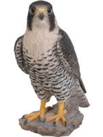 Small Image of Vivid Peregrine Falcon Lifelike Resin Garden Ornament