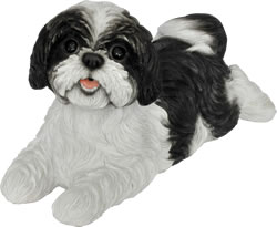 Black And White Shih Tzu Resin Garden Ornament £24.99 Uk